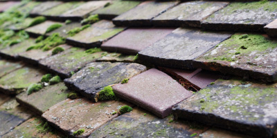 Clent roof repair costs